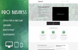 PRO Business - простой и чистый html шаблон