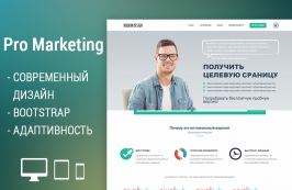 Pro Marketing - современный html-шаблон
